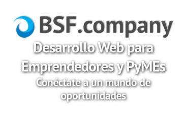 LOGO - BSF-company-Slogan