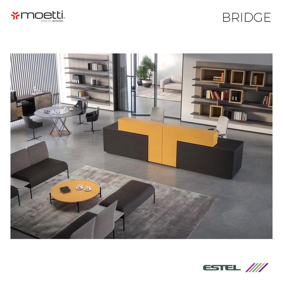 Moetti-5