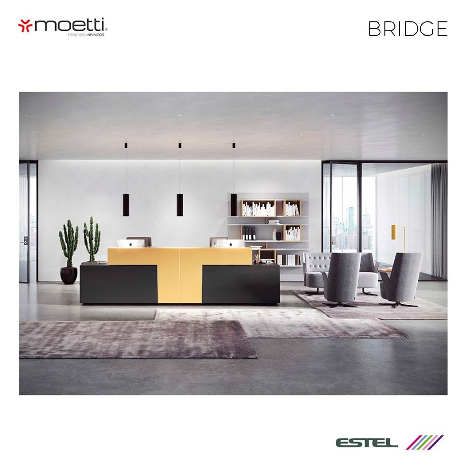 Moetti-6
